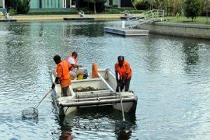 Floatsam-grit-screening-pond-lake-river-cleaning